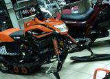 Ирбис Динго Т150 NEW Orange